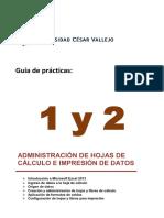 Guía de Prácticas 1 y 2