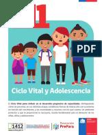 1.4 Ciclo Vital Adolescencia