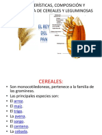 Características, Composición y Estructura de Cereales y