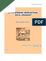 Manual PI 2017.pdf