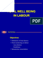 CH07 Fetal Well Being in Labour