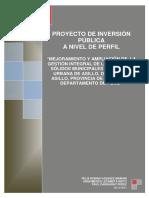 Pip Asilloambiental