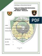 Doctrina Policial Final