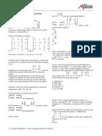 matematica_gabarito_resolucoes_matrizes_exercicios_2.pdf