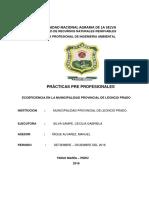 Ecoeficiencia en La Municipalidad Provincial de Leoncio Prado