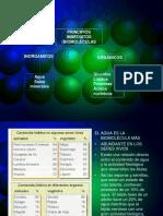 Biomoleculas Agua
