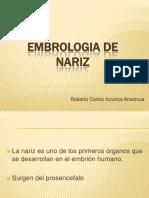 Embrologia de Nariz