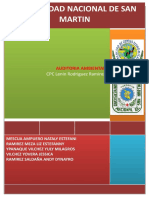 291757165-auditoria-ambiental-docx.docx