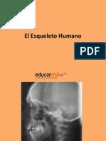 El_esqueleto_humano.ppt