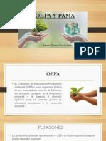 OEFA Y PAMA
