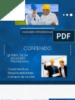 Ingeniero Profesional