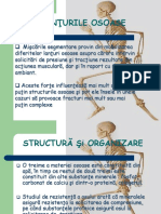 02 OSTEOLOGIE
