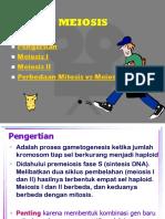 3.MEIOSIS
