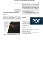 PIOGENIC GRANULOMA