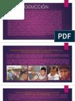 MAJUAN PINTADO… 1 y 2da Política de La Salud y Cómo Se Aplica Cada Una y La Introducción