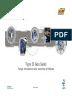 96394585-Type-28-Gas-Seals-System-Presentation.pdf