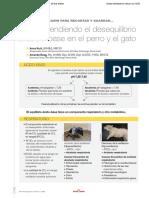242586309-Comprendiendoo-el-desequilibrio-acido-base-en-el-perro-y-el-gato-pdf (1).pdf
