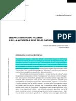 1 SCHWARCZ, L. Lendo e Agenciando Imagens Com Marcação