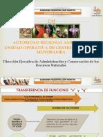 Autoridad Regional Ambiental.pptx