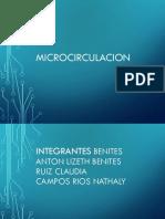Clase 2 Fisiologia de La Microcirculacion Presentareste (1)