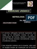 110808894-SINDROME-UREMICO.pptx