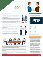 Infografia Perfil Del Soncumidor Japones