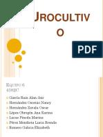 urocultivo-4102c.pptx