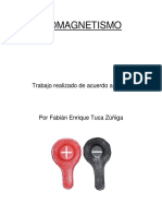 Fabian-Tuca-Biomagnetismo-Curso.pdf
