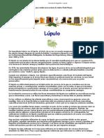 Cerveza de Argentina - Lupulo
