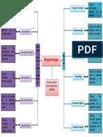371363336 Mapa Conceptual de Biopsicologia