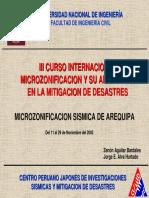 redacis19_p.pdf