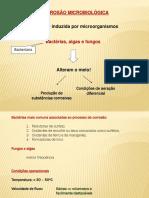 QIM_381_corrosão_microbiológica_2014_2
