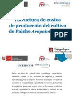 EXPO Estructura Costos Paiche
