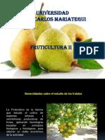 Fruticultura II 1.