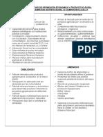 Analisis de Foda Unidad de Promoción Economica y Productivo Rural