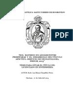 ROL MATERNO EN ADOLESCENTES PRIMIPARAS Y EL DESARROLLO DEL VINCULO AFECTIVO