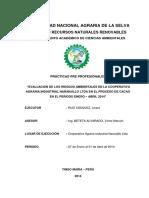 Informe Practicas Pre-Profesionales.pdf