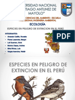 Especies en Extinción en El Peru