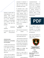 TRIPTICO FERCHOOOO.docx
