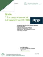 334623377-Tema-11-pdf