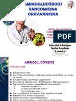 amgvancomicinaoritavancina-111021232307-phpapp01.pdf