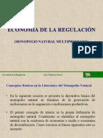 CLASE 04 REGULACION Monopolio Natural Multiproducto