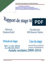 Copy of Raport