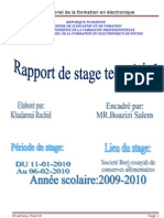 Copy of Raport