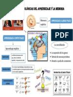 Bases Neurofisiológicas Del Aprendizaje y La Memoria