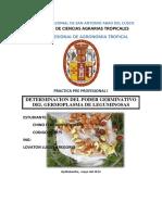 Universidad Nacional de San Antonio Abad Del Cusco Fito