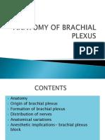 anatomyofbrachialplexus-120602095936-phpapp02