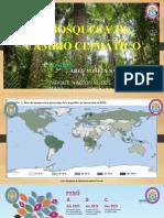 Los Bosques y El Cambio Climático - Copia