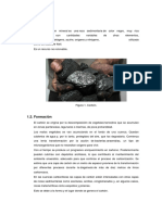 Carbon, Petroleo Gas Natural