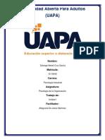 Psicologia de La Organizacion 1 (1)